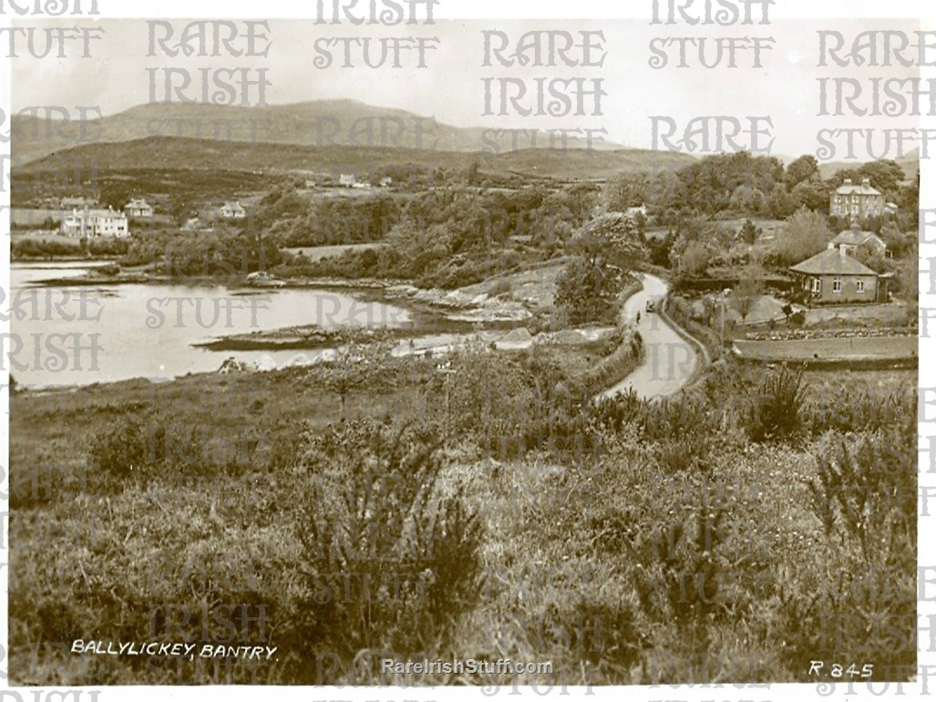 Ballylickey   Bantry   Co  Cork   Ireland 1905  Thumbnail0